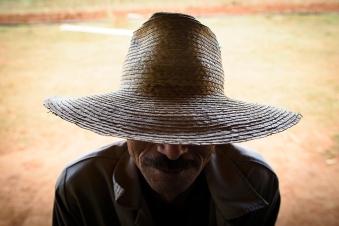 Tobacco Farmer -2019