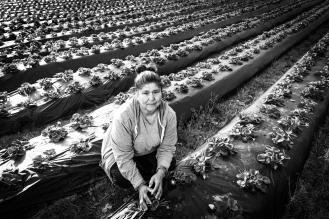 Bertha - Small Farm Owner