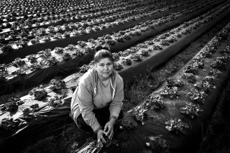 Bertha - Farm Owner